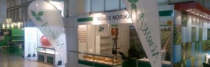 Норика България – сортове картофи от ново поколение