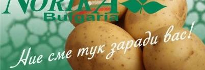 Норика на празника на картофите във Велинград
